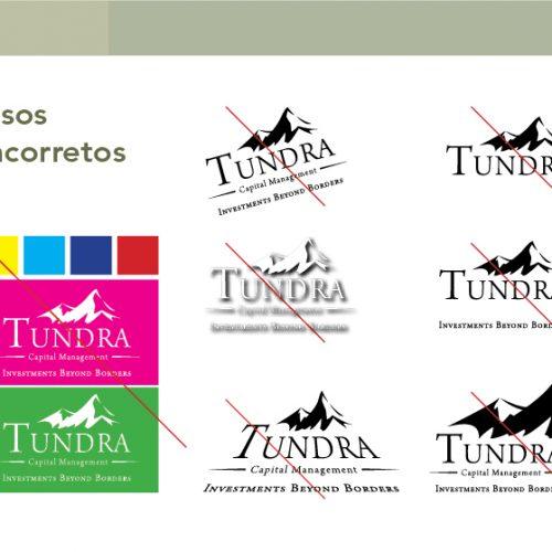 manual de identidade tundra7